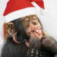 Macaco_Loco